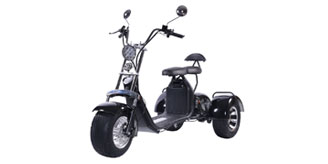 Citycoco Trike 3 Teker Scooter